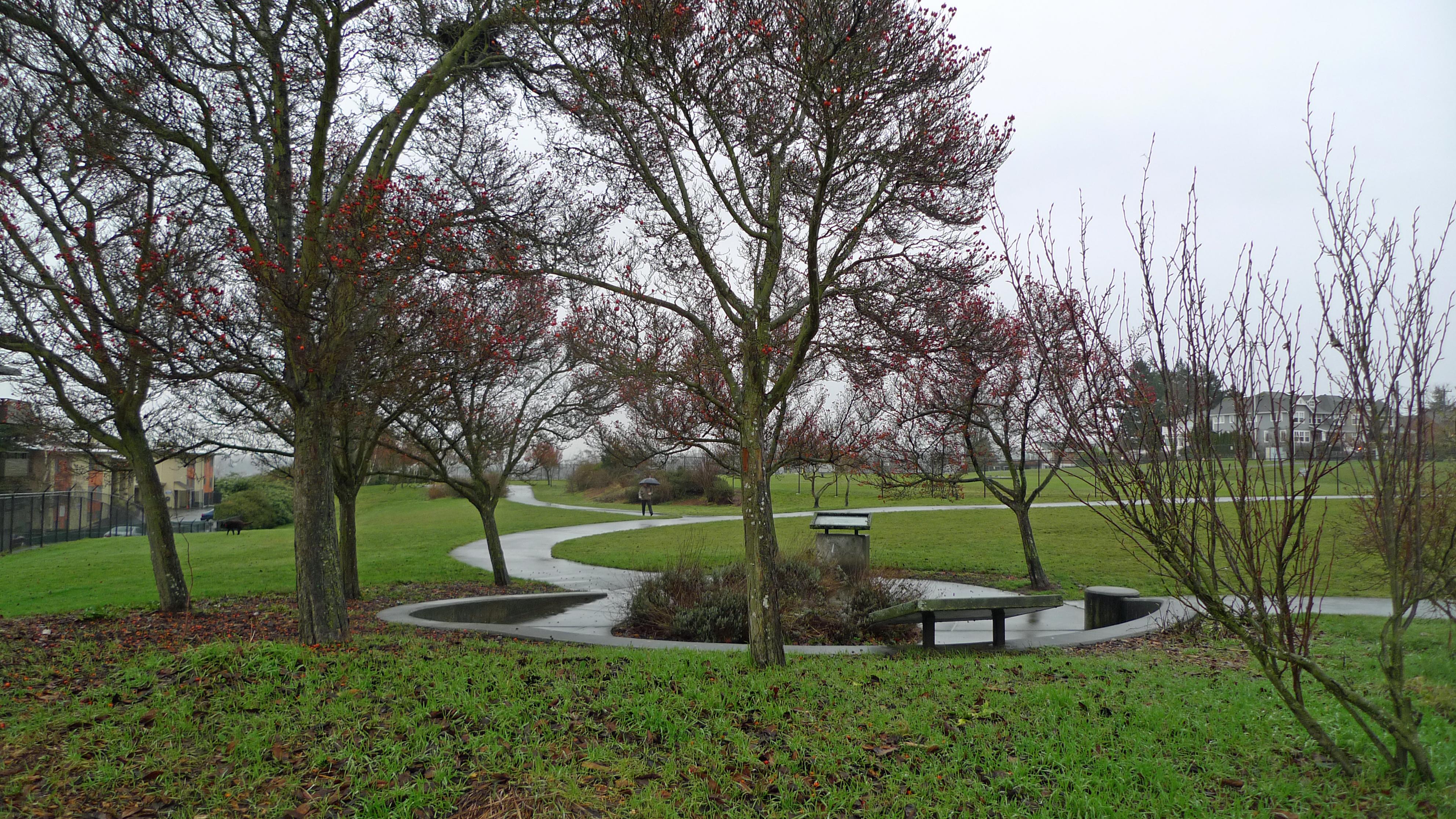 Magnolia Dog Park Seattle